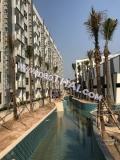 03 сентября 2018 Arcadia Beach Resort